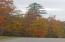 Fall foliage within the subdivision