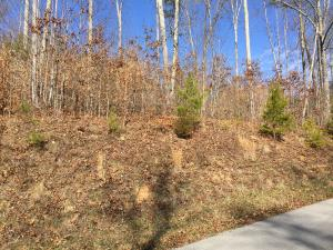 Hickory Pointe Lane, Maynardville, TN 37807