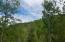 E Millers Cove Rd, Walland, TN 37886