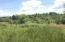 696 Reagan Valley Rd, Tellico Plains, TN 37385