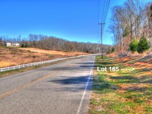 Lot 165 New Hope Rd, Rockwood, TN 37854