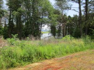 One lake view