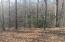 Lot 1 Big Creek Rd, LaFollette, TN 37766