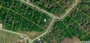 318 Eagle Ridge Drive, Rockwood, TN 37854
