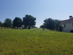 115 Lace Wing Drive, Vonore, TN 37885