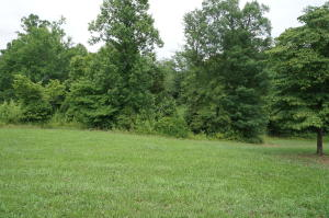 Dogwood Cove Rd, Spring City, TN 37381