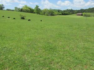 Charlene Lane, Greenback, TN 37742