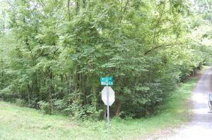 Rustic Drive, White Pine, TN 37890