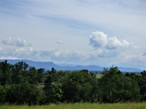 Lot 3 Falcon Rd, White Pine, TN 37890