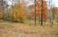 0 Fox Ridge Lane, Caryville, TN 37714