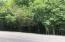 Lot 48 Rocky Top Lane, Jacksboro, TN 37757