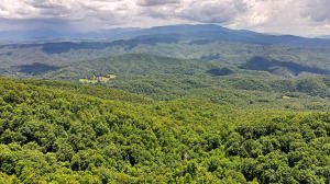 Tract 24 Chilhowee Mountain Tr, Maryville, TN 37803