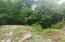 Clearwater Rd, New Tazewell, TN 37825