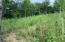 Lot #199 Waterside Lane, LaFollette, TN 37766