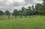 Classic, charming, farm fencing