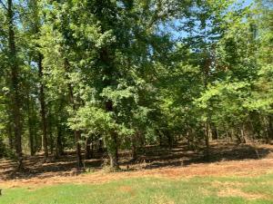 371 Walking Horse Trl. Lot 510 Tr, Rockwood, TN 37854