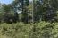 Crestwood Drive, Speedwell, TN 37870
