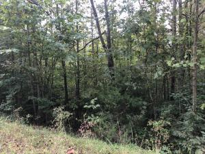 Windsor Lane, Jacksboro, TN 37757