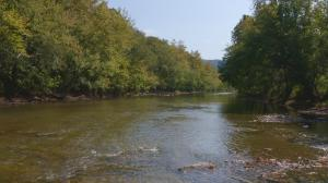 110 Acres Red Hill Rd, Tazewell, TN 37879