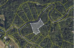 Lot 13 Sonshine Ridge Rd, Cosby, TN 37722