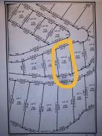 Rocky Top Lane, LaFollette, TN 37766