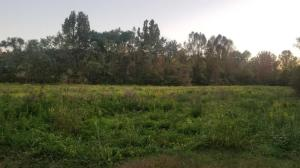 12.9 Acres Rhea County Highway, Spring City, TN 37381