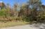 lot 82 Saddleridge Drive, Speedwell, TN 37870