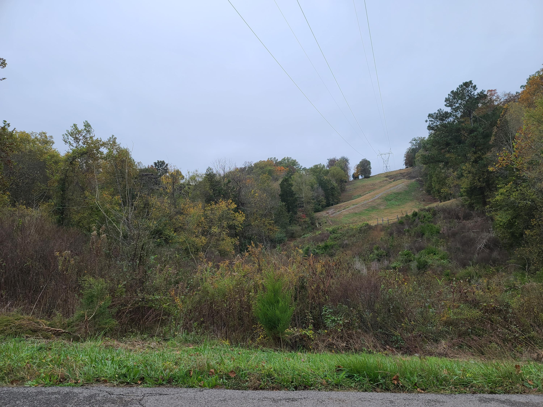 fall view to ridge