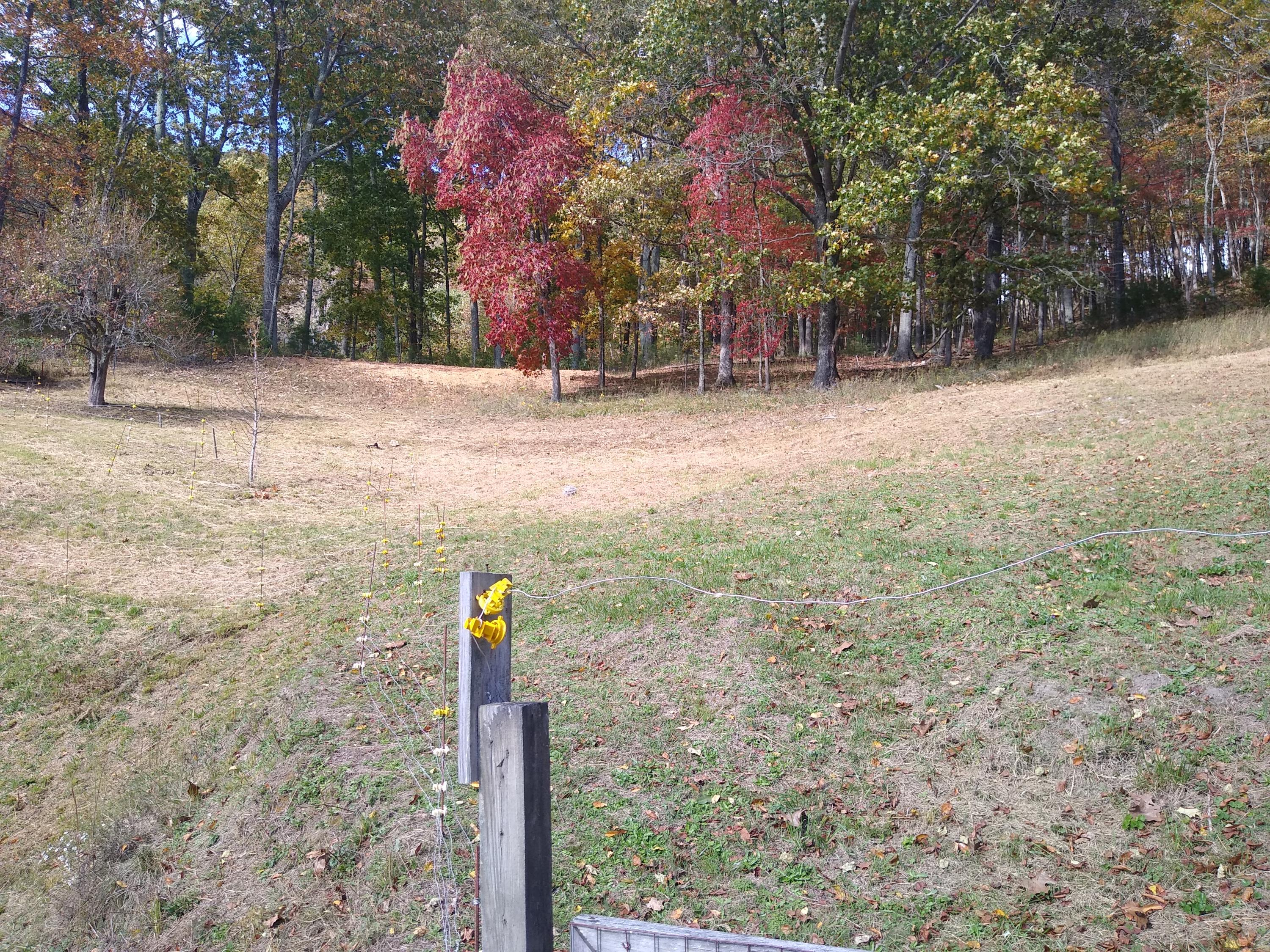 Property for sale at 1443 Cherry Bottom Rd, Caryville,  Tennessee 37714