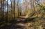 Elbow Hollow Lane, LaFollette, TN 37766