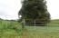 Chapman Rd, LaFollette, TN 37766