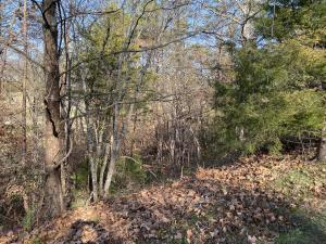 Eagles Ridge, Tazewell, TN 37879