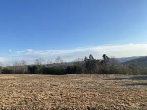 Panoramic Drive, Maynardville, TN 37807