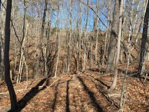 Big Creek Rd, LaFollette, TN 37766
