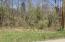Rock Creek Lane, LaFollette, TN 37766
