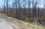 Lot 172 Saddleridge Drive, Speedwell, TN 37870