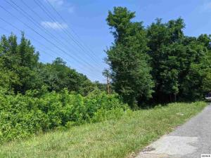 Panther Springs Rd, Morristown, TN 37813