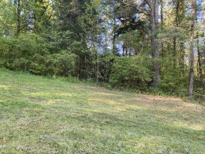 772 Wood Duck Drive, Vonore, TN 37885