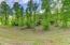 Lot 56 Old Leadmine Bend Rd, Sharps Chapel, TN 37866