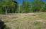 Lots 175 Hiwassee Drive, Jacksboro, TN 37757