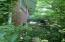 5465 Muddy Creek Rd, Lenoir City, TN 37772