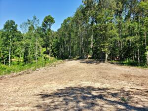 County Road 135, Riceville, TN 37370