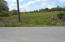 lot # 7 Shadden Rd, Tellico Plains, TN 37385