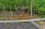 918 Foxridge Lane, Caryville, TN 37714