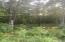 Bear Knob Lane, Crawford, TN 38554