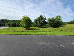3.36 Acres Emerald Pointe Circle, Rockwood, TN 37854