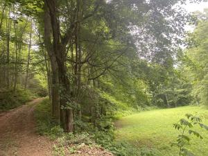 Lightfoot Way, Sevierville, TN 37862