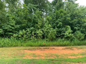 368 Walking Horse 521 Tr, Rockwood, TN 37854
