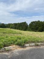 Rural Vale Rd, Tellico Plains, TN 37385