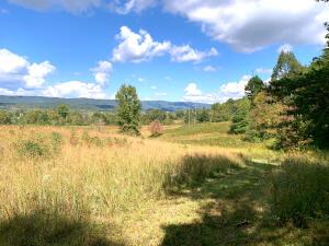 Wilderness Tr, Rockwood, TN 37854